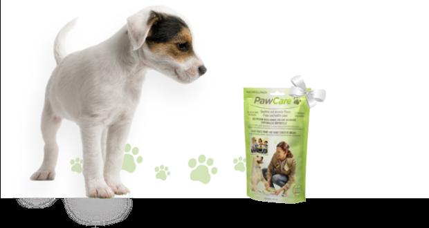 PawCare il tappetino pulisci zampe per il cane