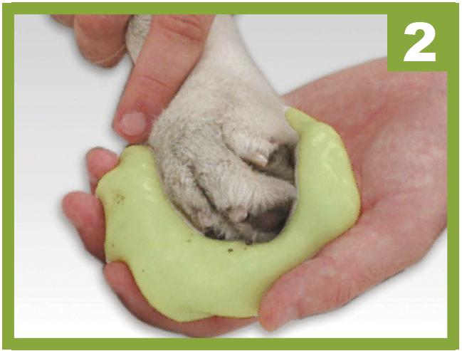 Pawcare il tappetino pulisci zampe per il cane blog - Tappetino riscaldante per cani ...