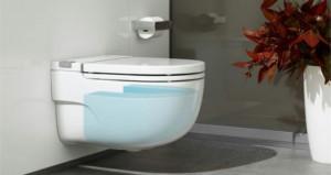 In Tank il wc della Roca con la cassetta di scarico incorporata